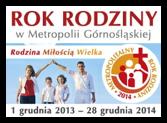 Rok Rodziny w metropolii górnośląskiej